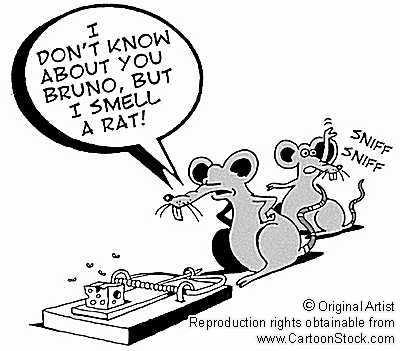 smell-a-rat