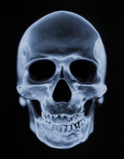 skull_and_bones_0154